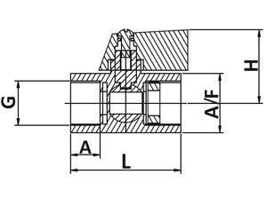 minivalvgraph